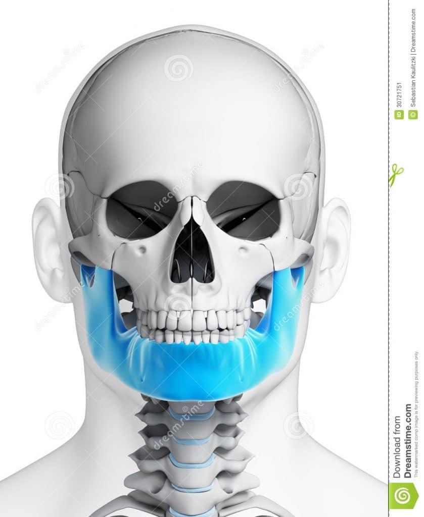 osso della mandibola visto con TAC volumetrica dentale