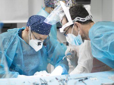 chirurgia bellemo 7